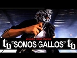 THELL BARRIO - Somos Gallos (official video)
