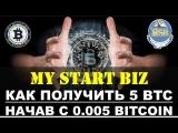 Платформа «My Start Biz» - Доход и Командообразование!