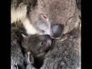 Mom with baby