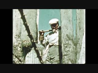 Лев Давидович Троцкий в цвете — (1940г. Мексика-Койоакан)