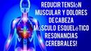 Reducir Tensión Muscular y Dolores de Cabeza, Músculo Esquelético Resonancias Cerebrales Binaural