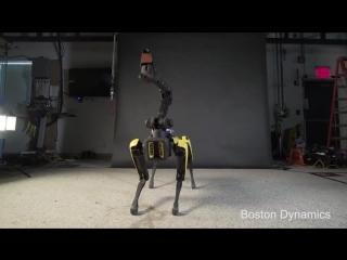 Танцевальная пауза от Boston Dynamics