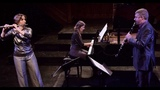Allegro (Trio for Flute, Clarinet and Piano, WoO 37) - Ludwig van Beethoven