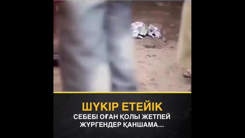 Ruhani_ilimBneszndAX9-.mp4