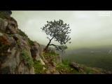 Dmitry Kostyuchenko MAQOTO - Under Pressure (Original Mix) by Yeiskomp Records 1080p