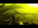 Подводная охота Щука 15 кг судаки язи