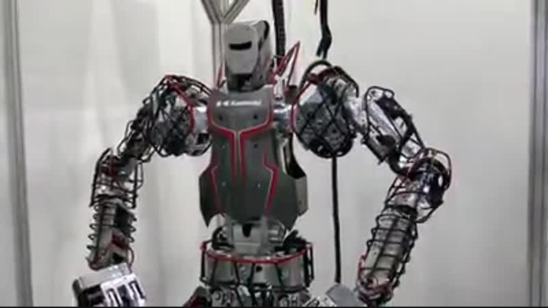 Humanoid Robot Kaleido Kawasaki