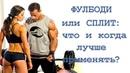Тренировки «ФУЛБОДИ» или «СПЛИТ»: что и когда лучше применять?