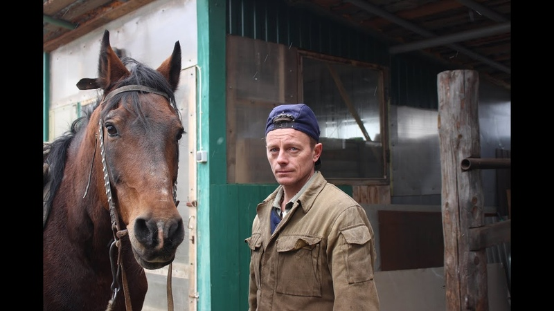 Shoe a horse Подковать коня В гостях в кузнице у Шарапова Олега Александровича SHABALIN DESIGN