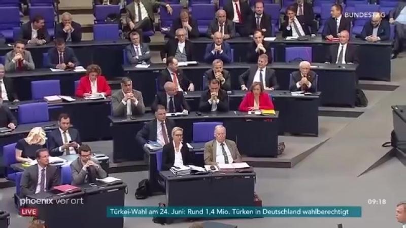 Bernd Baumann -AfD-- Frauke Petry - VS - Horst Drehhofer- Familiennachzug