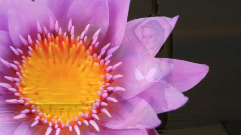 Relaxing Yoga Music Positive Energy Music Relaxing Music Slow Music ☯2081
