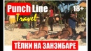 Голые тёлки на пляжах Занзибара. Масаи и женский секс туризм
