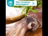 Как готовить кальмаров