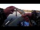 Отчёт, с вечерней рыбалки, вот так бывает и даже часто (16.07.18)