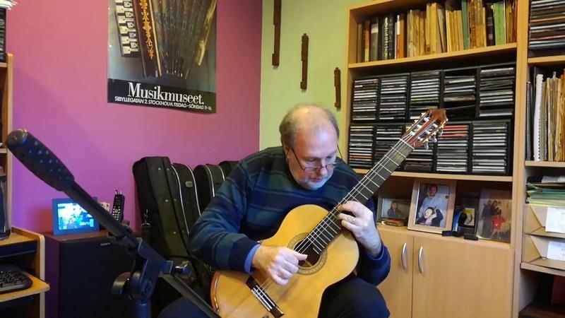 José Luis Merlin Canción del caminante solitario. Enrique Bocaccio en Guitarra Clásica