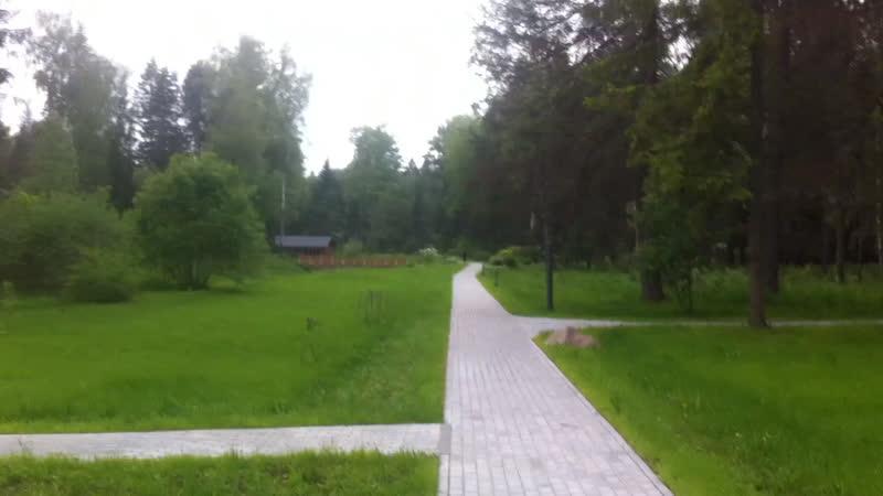 Izumrudni les