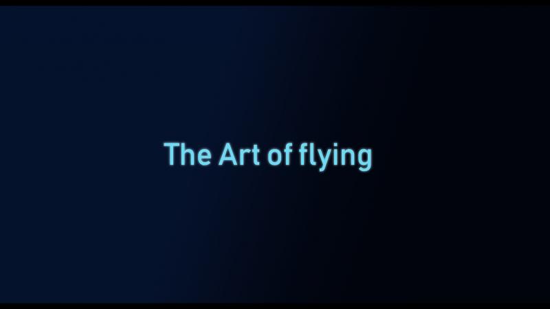 The Art of flying Denio_8