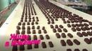 Сарапульская кондитерская фабрика