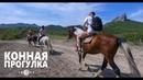 Прогулка на лошадях Крым, пгт. Коктебель, отель LEXX