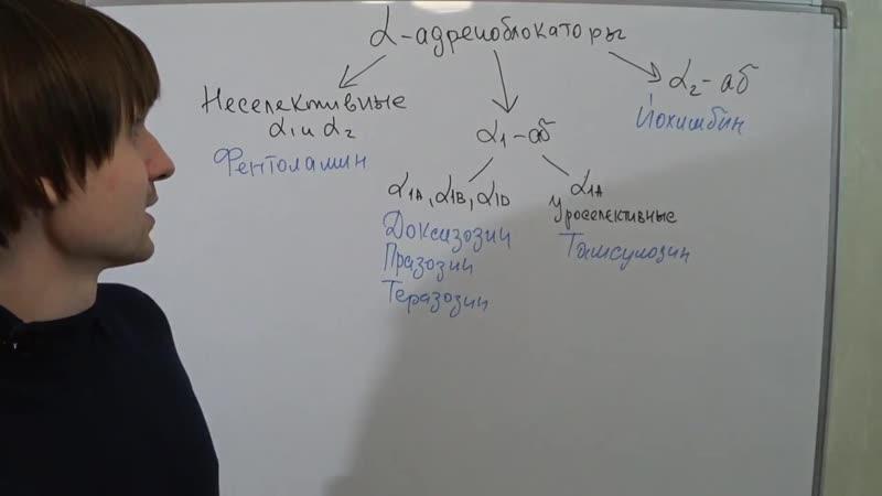 Базисная фармакология альфа адреноблокаторов