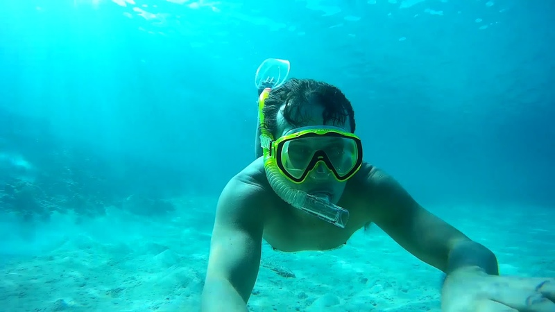 Отель Бейрут Подводный мир Hotel Beirut Underwater world