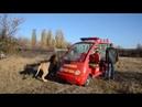 Олег Зубков вернулся и все львы бегут навстречу !