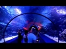 Океанариум Аквариум Анталия Турция 2018 Antalya Aquarium