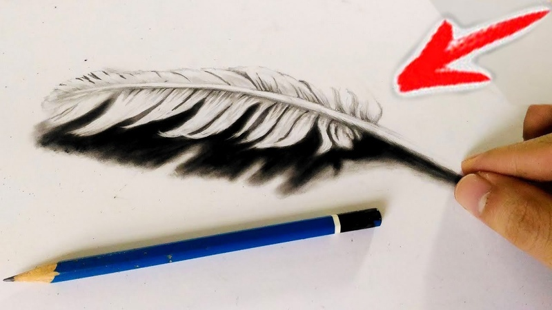 How to Draw 3d Feather - Cool 3D Trick feather art