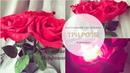 Тройной настольный светильник розы из фоамирана