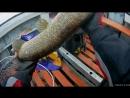 Моя Рыбалка в Карелии часть 2 ИЮНЬ