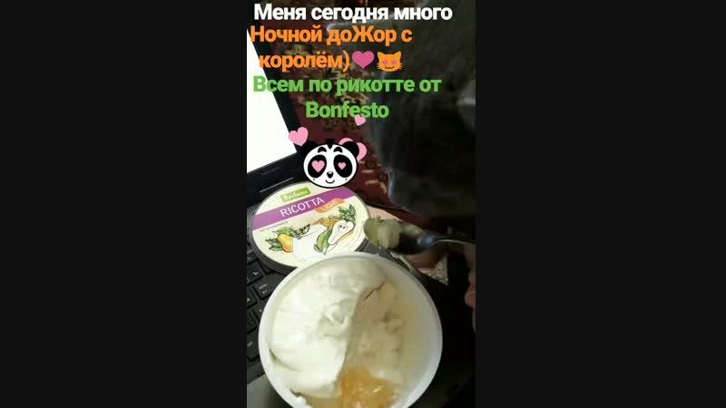 VID_103280321_080734_525.mp4