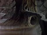 Пираты тёмной воды - Андорус-Панацея (Сергей Кузнецов)