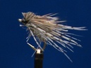 Fly Tying a Hare's Ear and Partridge Caddis with Jim Misiura