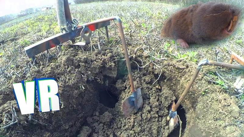 Как защитить свой огород от кротов? (КРОТОЛОВКА)⚕