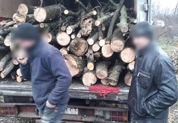 В Кальмиусском районе Мариуполя задержали незаконную группу лесорубов