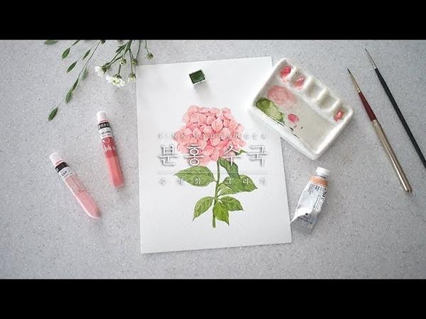 분홍 수국 수채화 그리기 (Pink Hydrangea Watercolor Painting) _이랑그림
