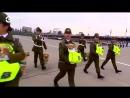 Полуторамесячные щенки ретриверов участвуют в военном параде в Чили