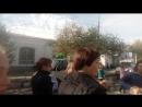 Осенняя ярмарка, Троицк,22.09.18, собака Дина