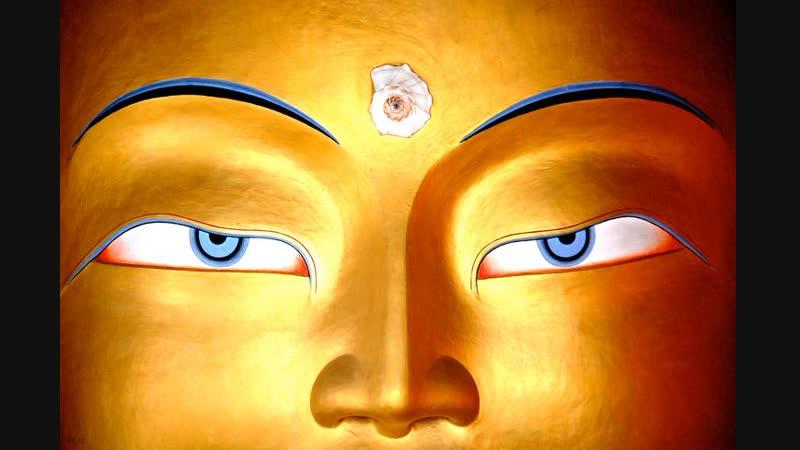 Unglaublich. Das Dritte Auge der Schlüssel zu Deinem höheren Bewusstsein.