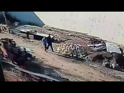 Zinciri Kıran Köpek adama saldırdı ( diğer köpek de adamın hayatını kurtardı) kangal