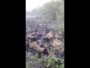 Пенза- Ухтинка -08.07.2018. 16.20
