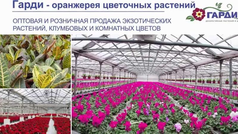 Гарди - питомник растений и цветов