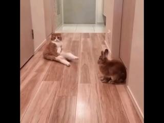 Пожалуйста, сядьте)