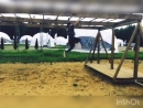 Отличная тренировка на мини-полосе «Гонки Героев». Длина не большая,но 20 препятствий грузят бодрячком💪🏻Тренируйтесь☝️