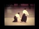 Морихиро Сайто Сенсей. Ирими наге.Morihiro Saito Sensei. Irimi nage