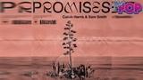Calvin Harris &amp Sam Smith en Promises
