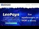 Leo Pays Как заработать от 100$