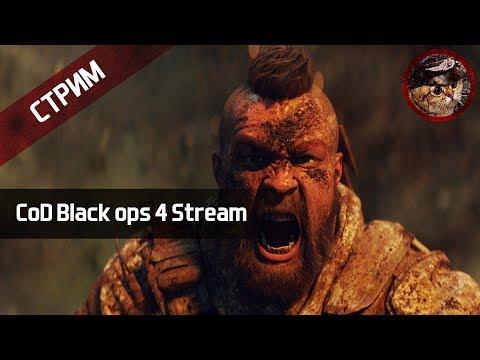 Продолжаем смотреть Call of Duty: Black Ops 4 (PlayStation 4 stream) | WaffenCatLive