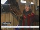 Жительница Чебоксарского района более 20 лет разводит породистых лошадей и мечтает обучать всех жела