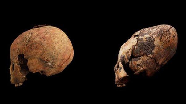 В Китае найдены необычные черепа возрастом 12 000 лет Китайские ученые завершили изучение останков народности «хоутаомуга»(Houtaomuga), найденных в Цзилине. Они определили, что возраст самого